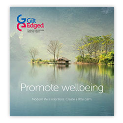 Promoting Wellbeing