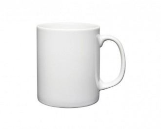 AntiBug® Durham/Cambridge Mug