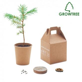 Pine Tree Set