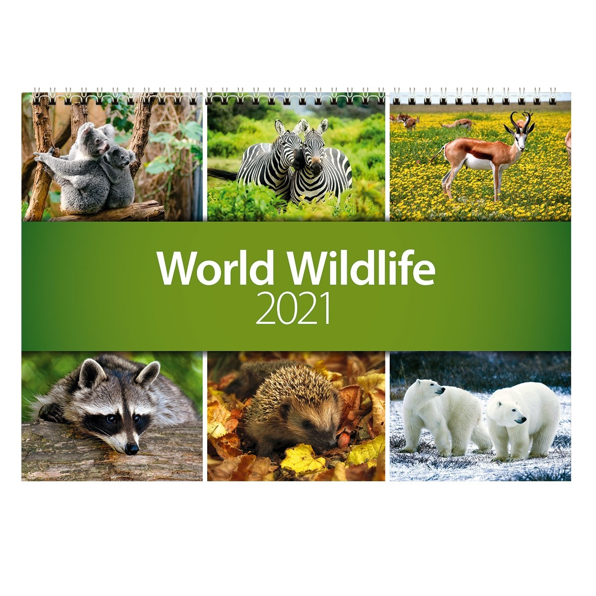 2021 World Wildlife Wall Calendar