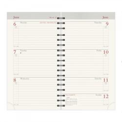 Senator 13 Month 2022 Pocket Diary Refill / Insert & Planorama